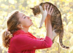 Почему нельзя целовать кошек Интересные факты и утверждения