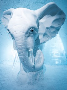 Ice Hotel ' Stay In