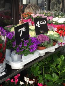Assortment of flowers and plants on display at the Le Marais Market in Paris