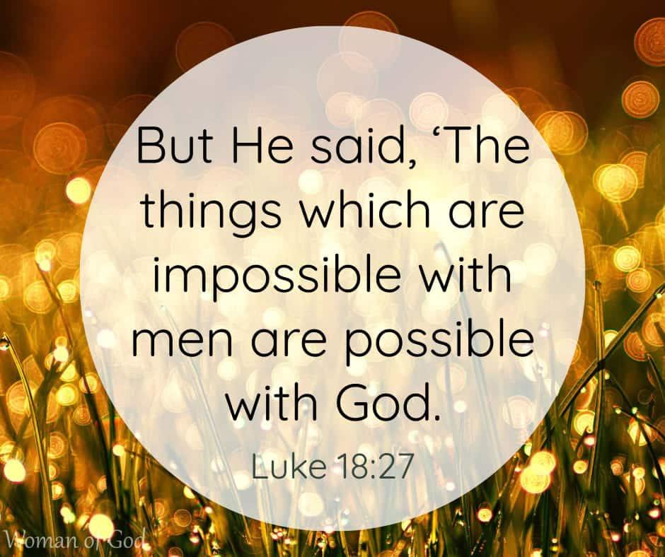 Luke 18:27 Bible Verse