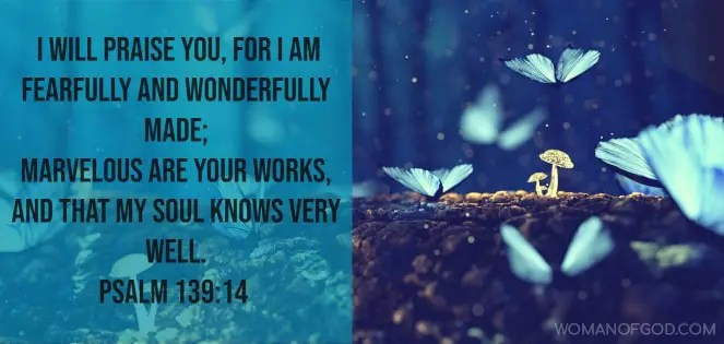 psalm 139:14 Bible Verse