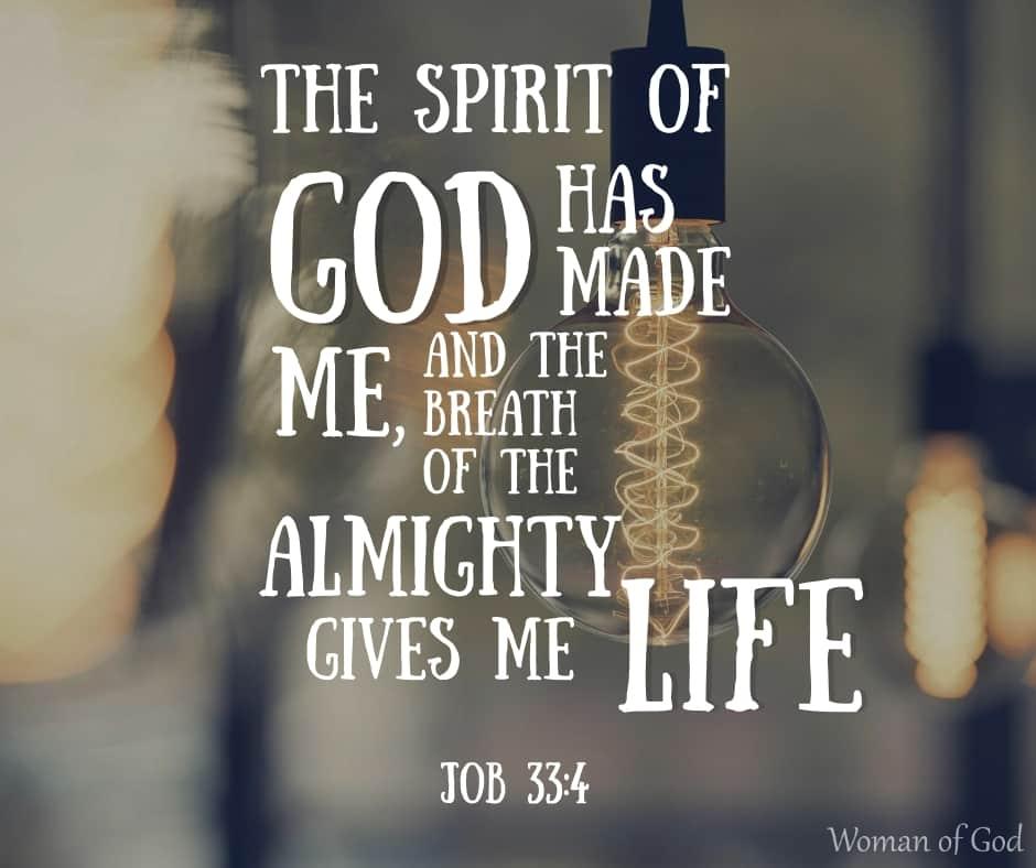 bible verse job 33 4