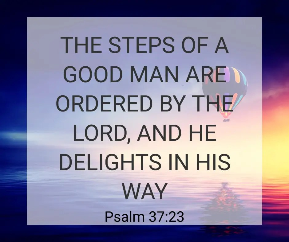 Psalm 37:23 Bible Verse