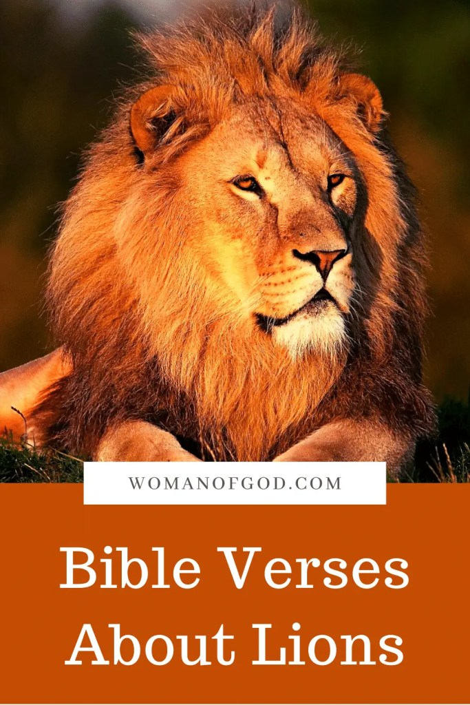 Bible Verses About Lions pins