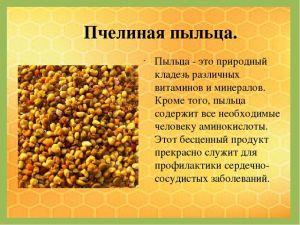 pchelinaya-pilcha