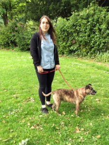 Eleanor-dog-walker-moseley