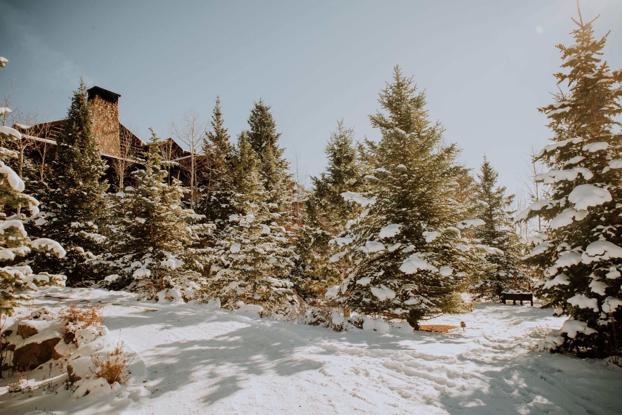 The Broadmoor cloud camp lodge