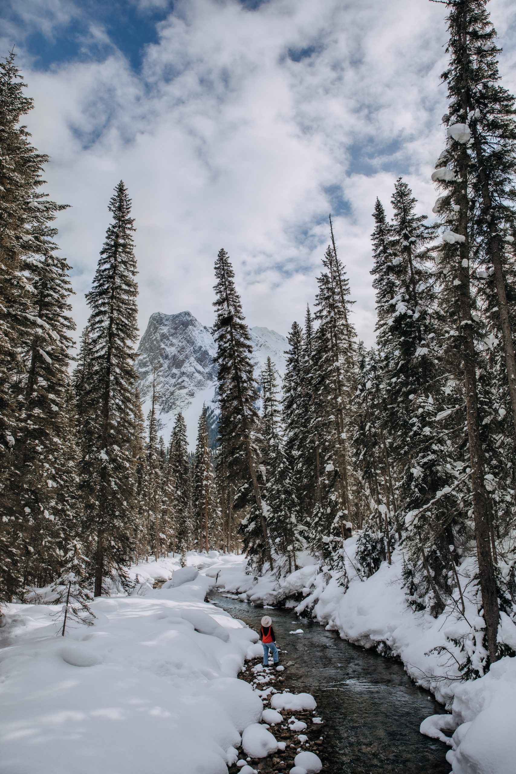 The Ultimate Banff Winter Guide - Emerald Lake Lodge in Yoho National Park
