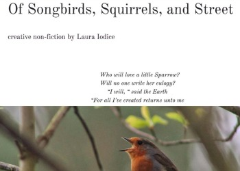 laura Iodice songbirds piece