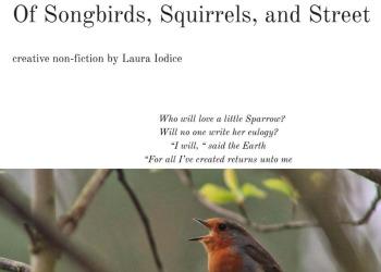 laura Iodice songbirds piece