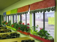 A green view through a classroom window can improve ...