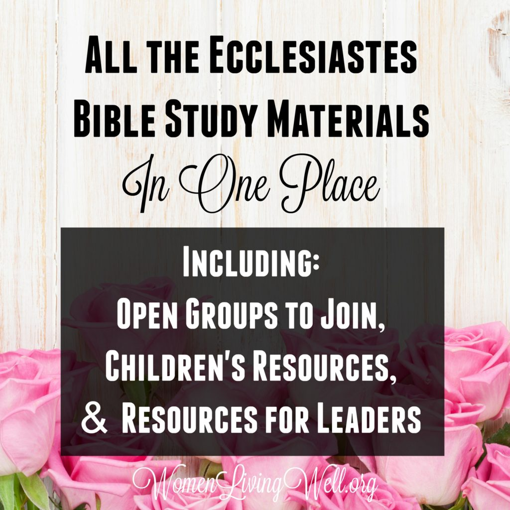 All The Ecclesiastes Bible Study Materials In One Place Including Open Groups To Join Children