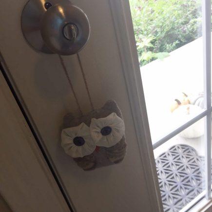 door-owl