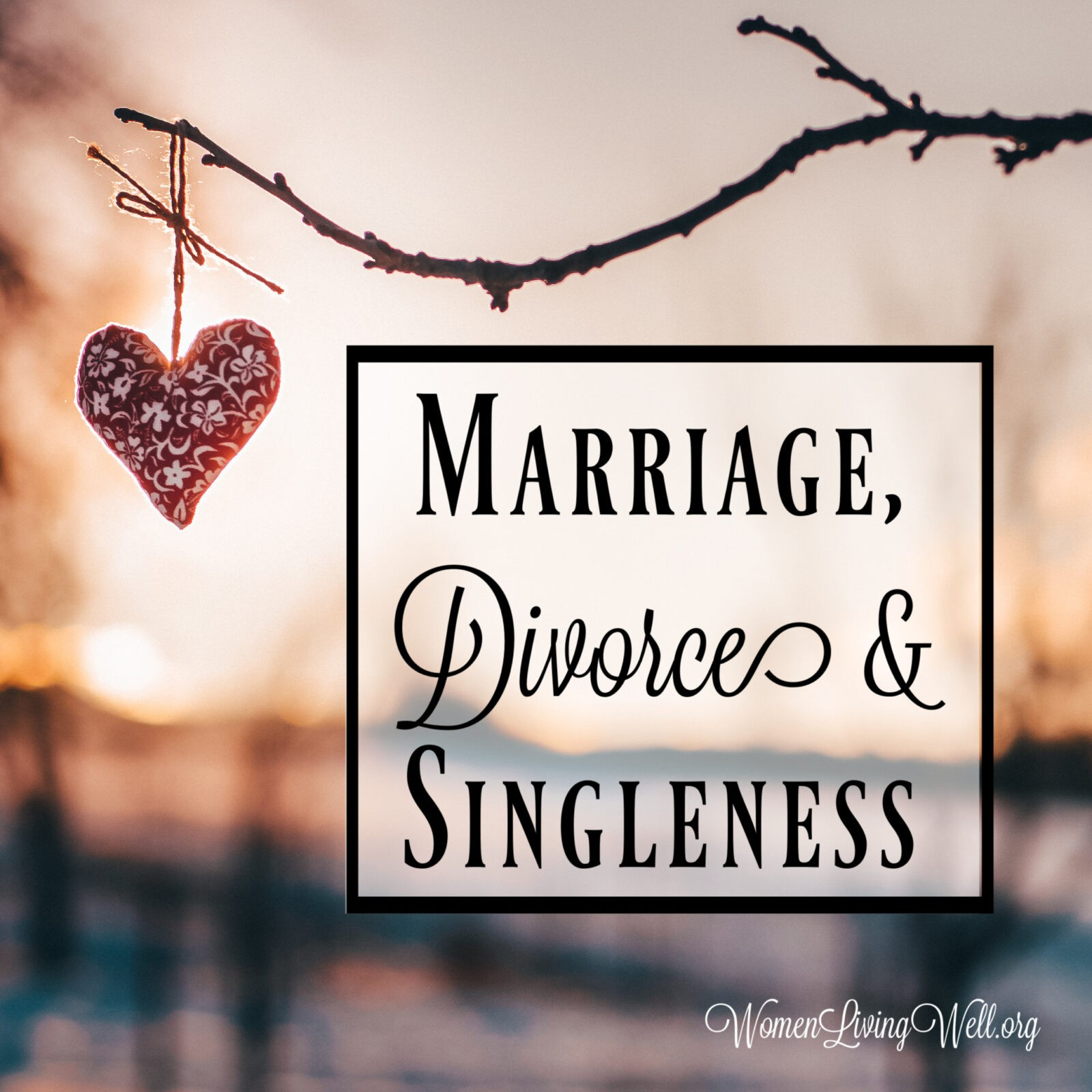 Marriage Divorce And Singleness