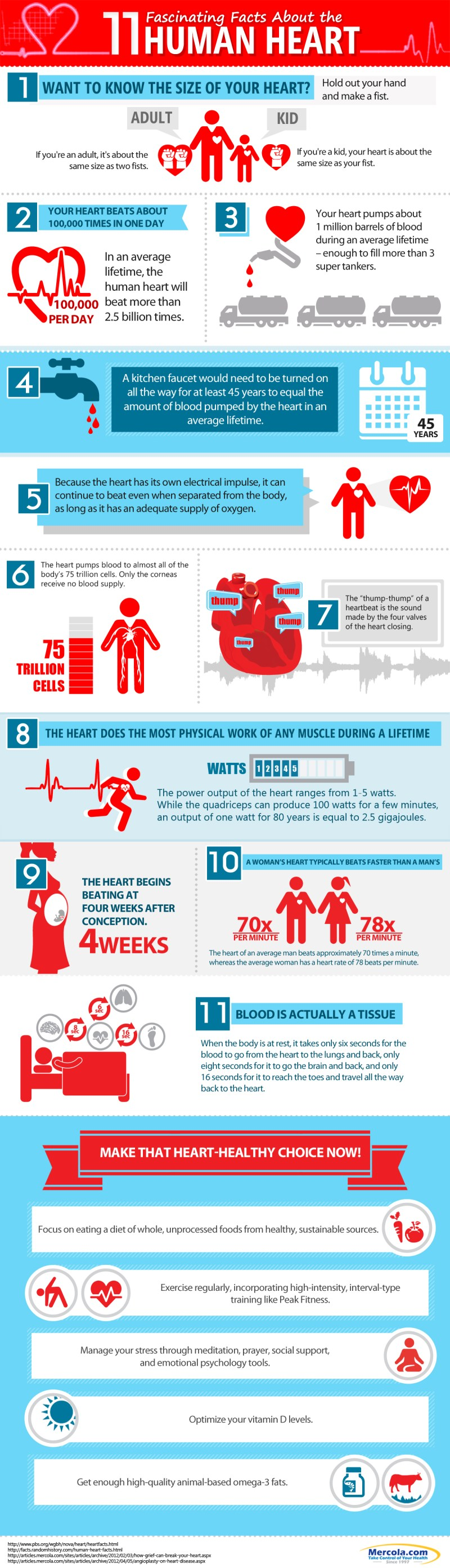 human-heart-facts-highres