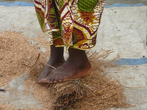 Women farmers key to Liberia climate change debate