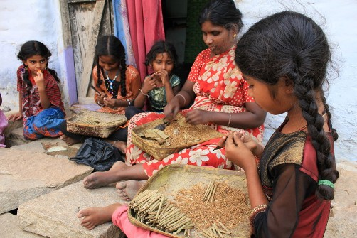 INDIA: Slave work conditions dire for girl-child beedi cigarette labourers