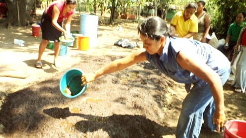 EL SALVADOR: Women work to save ecosystem through forest conservation