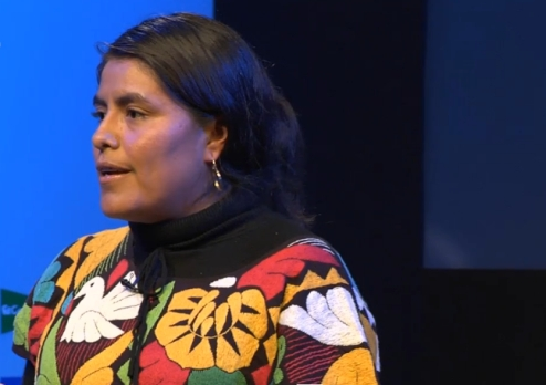 Indigenous heroine Eufrosina Cruz fights to empower women