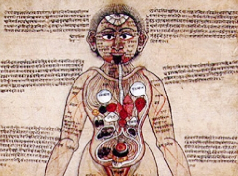 India's ancient indigenous medicine lays path for modern healthcare