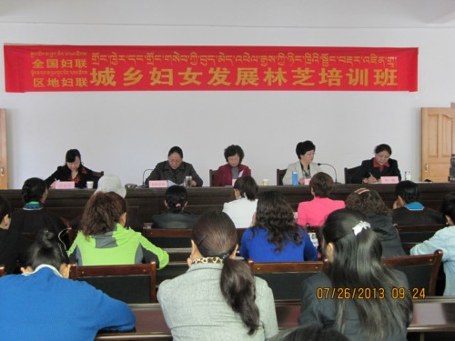 ACWF, Tibet Women's Federation Hold Training for Nyingchi Women