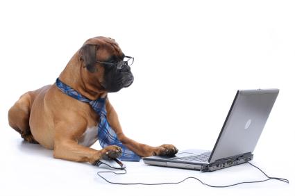 HR and Social Media: You Can Teach a Dog New Tricks