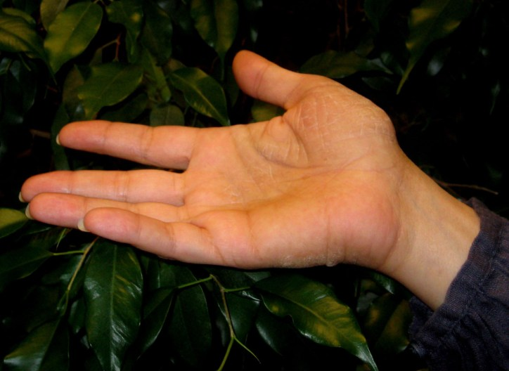 Hand with green background