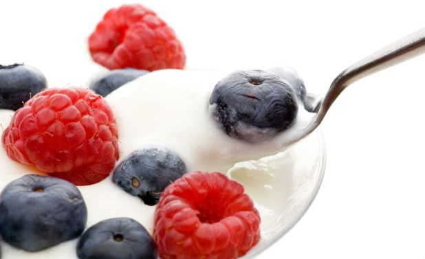 probiotic-greek-yogurt-probiotic-foods-assets-of-weight-loss