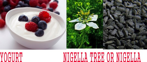 Natural weight loss take - yogurt-nigella