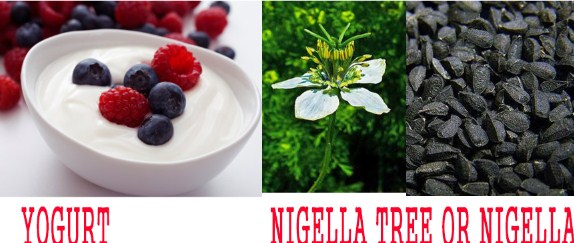 yogurt-nigella