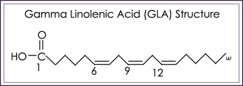 Gamma-Linolenic Acid (GLA)