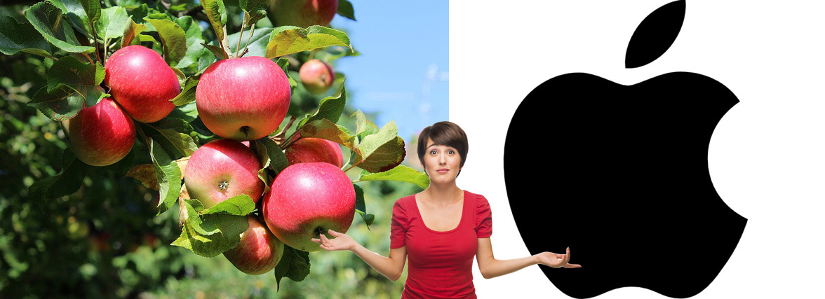 Best Pure Organic Raw Apple Cider Vinegar - Boosts Energy - Reviews & Health Guide