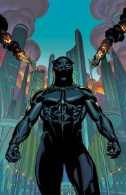 The current Black Panther series by Tahnesi Coates follows a diverse cast of characters with beautiful storytelling. Be sure to check out World of Wakanda by Roxane Gay and Yona Harvey (the first two Black women to write for Marvel)!