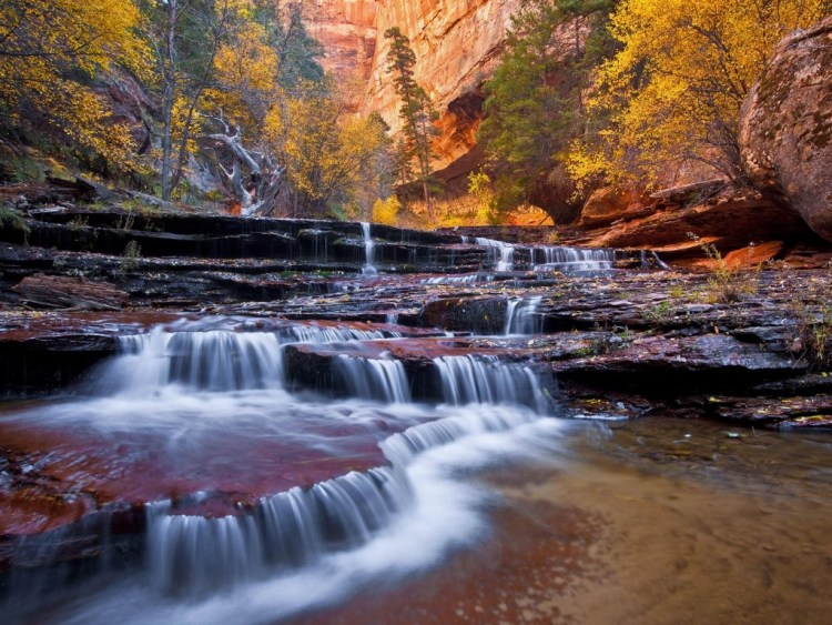 United States Zion National Parks 02