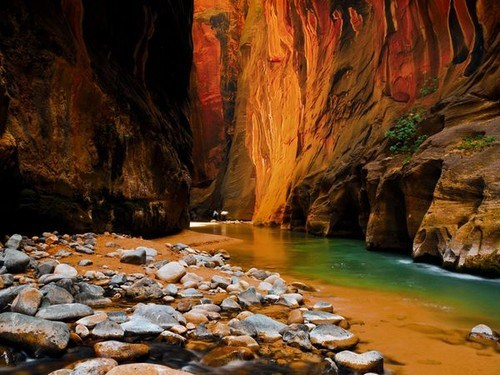 United States Zion National Parks 14