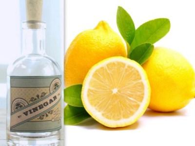 lemon juice and vinegar for hair, hair care tips