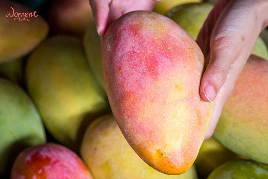 水蜜桃芒果-採收裝箱