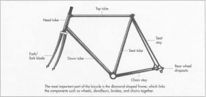The frame is the most important part of the bicycle