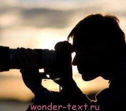 работа в интернете фотограф