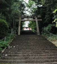 Stairs to Niukan Shobu Jinja from Jisonin