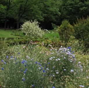 Small garden in Yoyogi Park