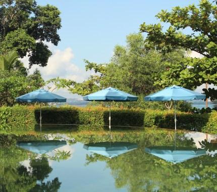 Pool near a main restaurant