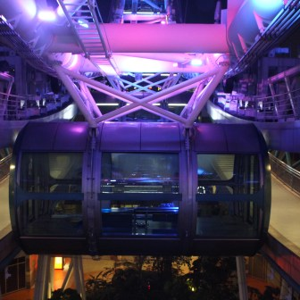 Singapore Flyer's riding cage
