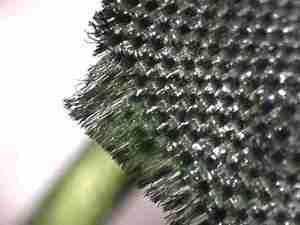 zOrb Digital microscope image of artificial leaf