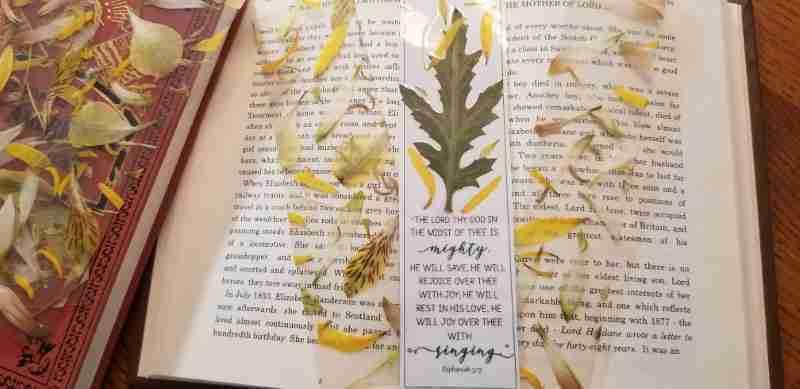 Pressed flower Bookmarks Printable