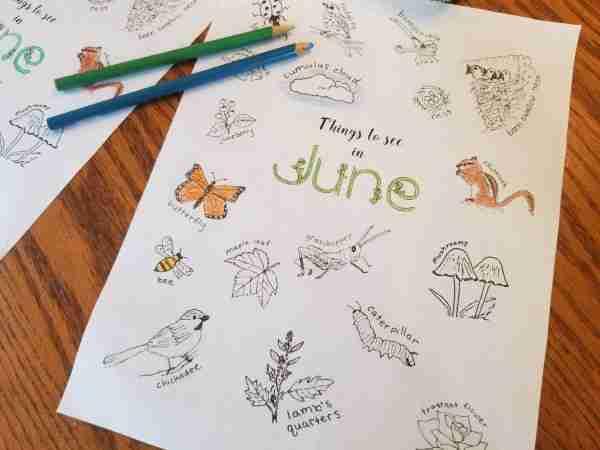 June-Coloring-Sheet