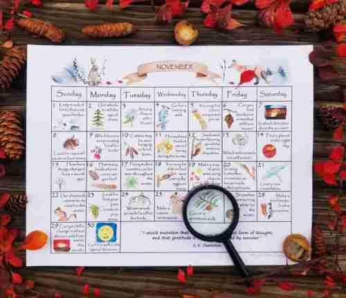 November Nature Study