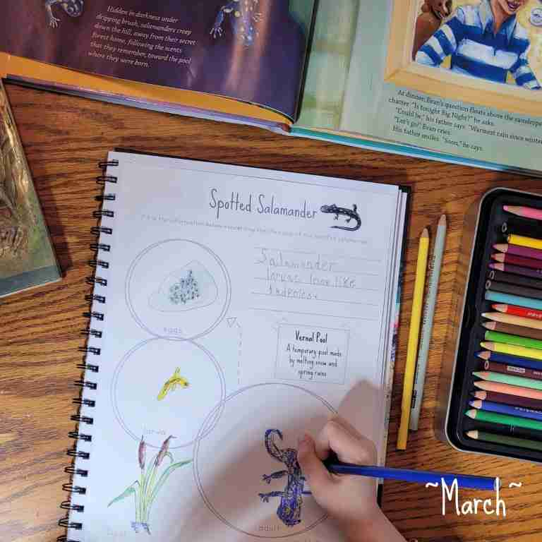 March Nature Study Journal Page Salamanders