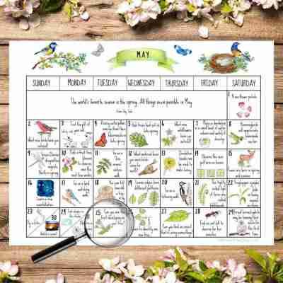 May Nature Calendar- 31 Days of Nature Activities