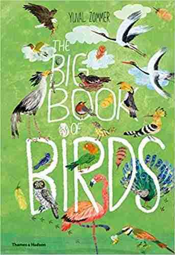 Big-Book-of-Birds